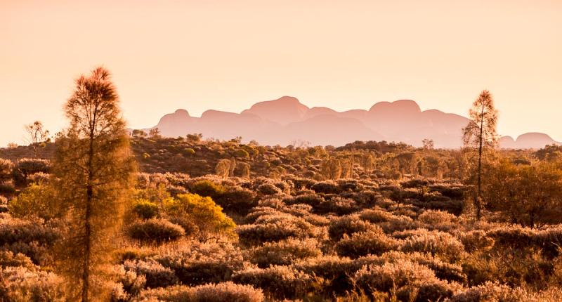 Overnight Uluru And Kata Tjuta Tour Dingo Dreaming